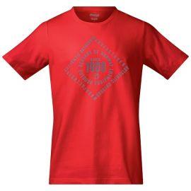 Czerwony (FireRed/SolidGrey)